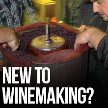 New to Winemaking?