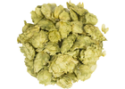 East Kent Goldings Whole Hops